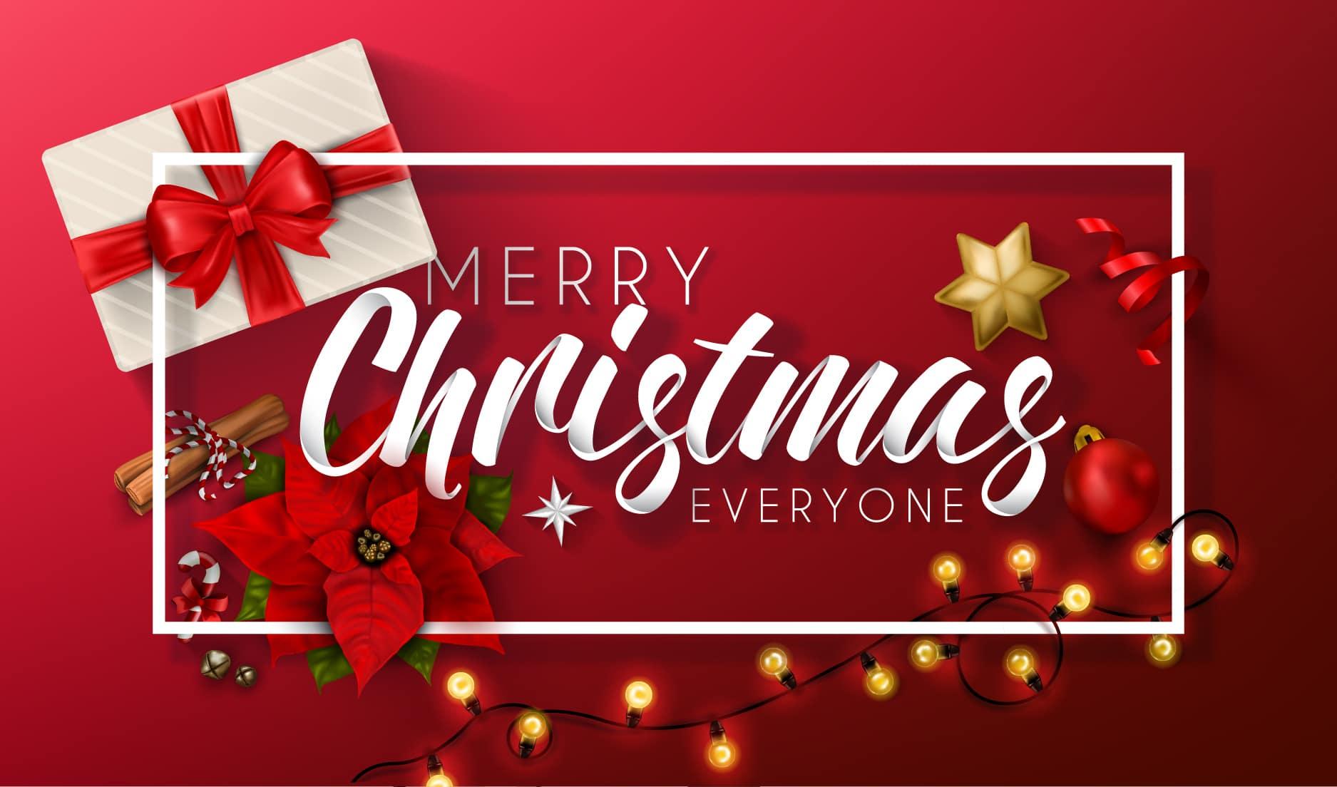 Siamo aperti anche durante le festività natalizia